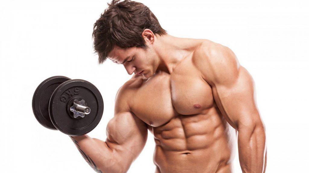 Productos para Musculación